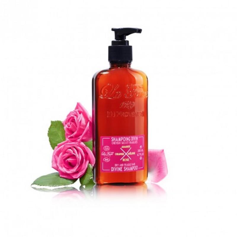 Šampon za krhke in suhe lase Divine